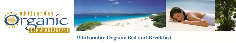 Whitsunday Accommodation in the heart of Airlie Beach. Welcome to Whitsunday Organic Bed and Breakfast.