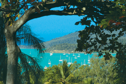 View The Whitsundays from the balcony of the Organic Bed and Breakfast